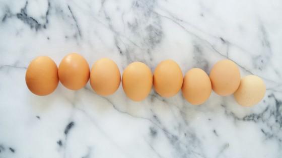 ciabatta egg sandwich